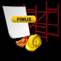 Documento PIMUS